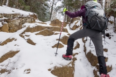 Adirondacks - January