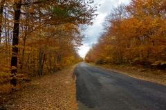 Trans Adirondack Route
