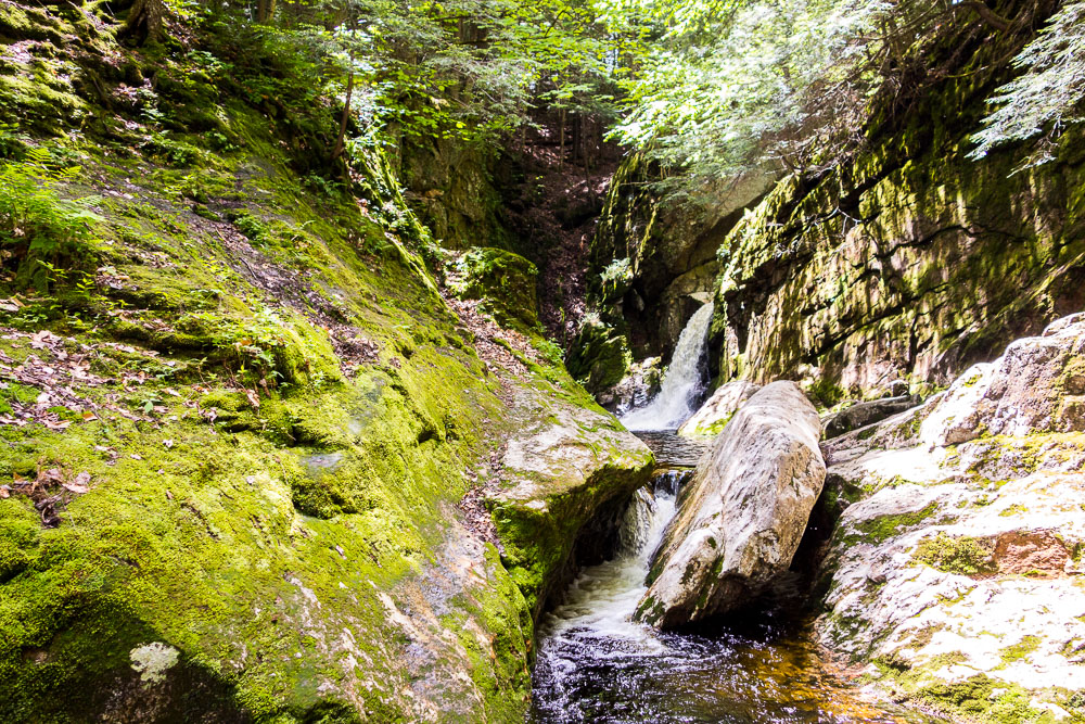Welton Falls hike